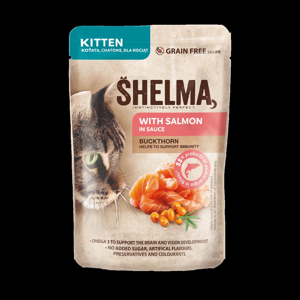 Šhelma kassipoja einekotike lõheifileed astelpajuga kastmes
